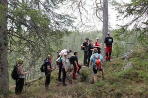 Syöte National Park Hiking Tour
