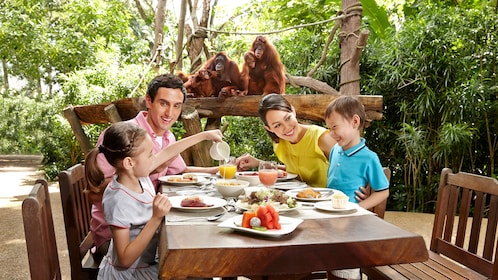 family dining outside next to a group of orangutans