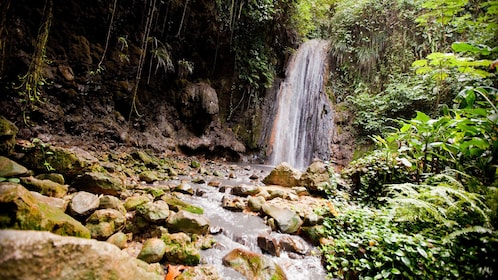small waterfall in Saint Lucia