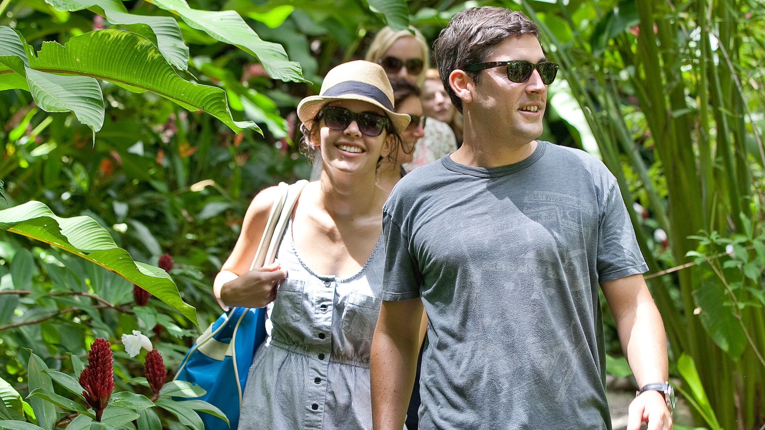 group walking in the wilderness in single file line in Saint Lucia