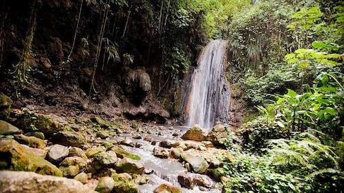 small waterfall in the forest in Saint Lucia