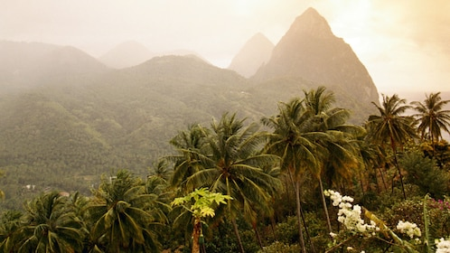 looking over the tropical mountainous landscape in Saint Lucia