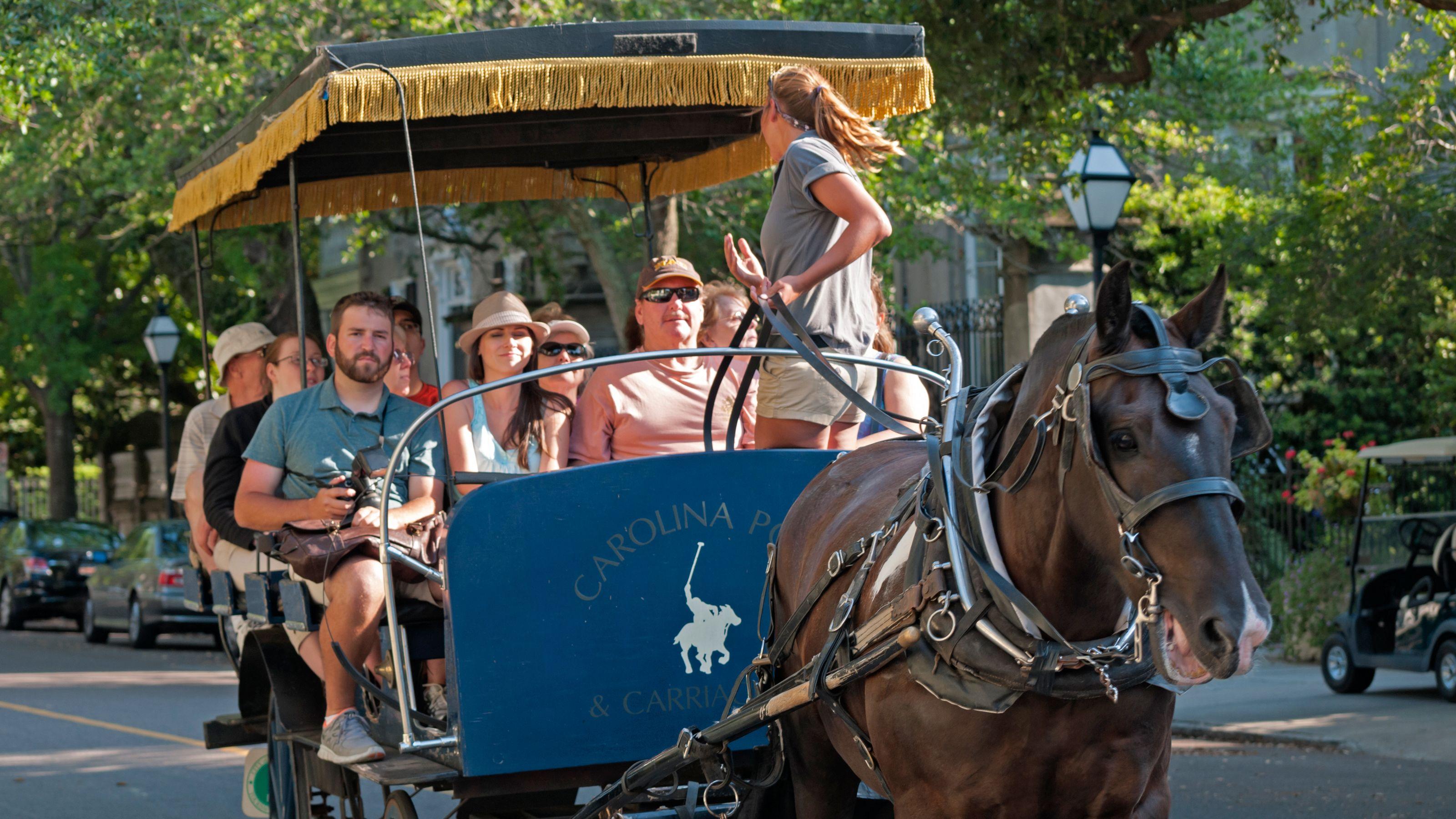 Horse-Drawn Carriage Tour of Historic Charleston