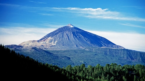Mountain and surrounding forest in Teide National Park