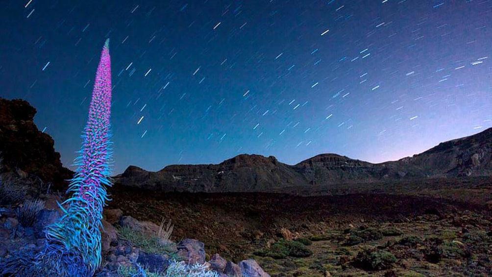Foto 1 van 5. Tenerife at night