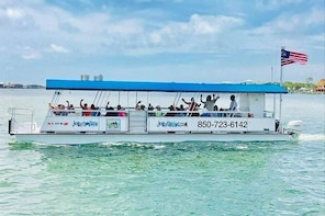 3 Hour Private Powerboat Dolphin Cruise with Remote Beach Stop up to 15 gue...