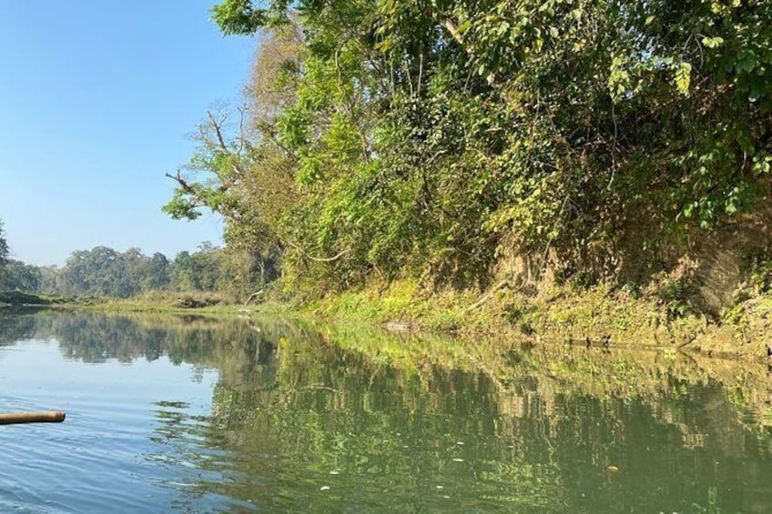 Show item 3 of 8. Canoeing and Nature Walk in Chitwan National Park