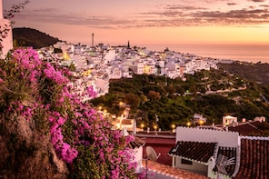 Day trip Nerja and Frigiliana from Granada