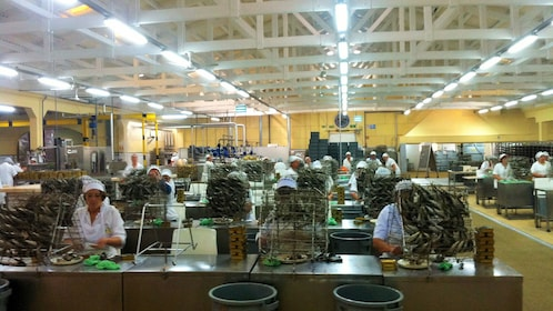 Rows of workers gutting fish in a factory