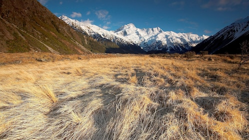 Dry grass field with Mountains in the background