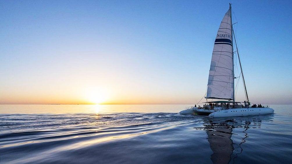 Foto 3 von 6 laden Catamaran at sunset in Mallorca Island