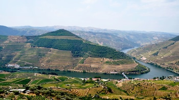 Small-Group Douro Valley with Lunch & Wine Tasting