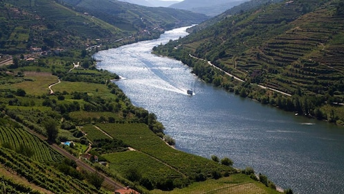 Boat on river in Douro Valley