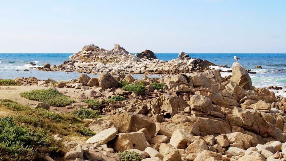 Show item 3 of 5. Rocky shoreline