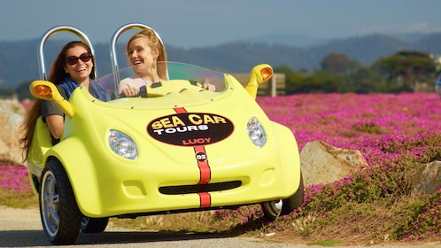 Sea car driving with flowers in the background