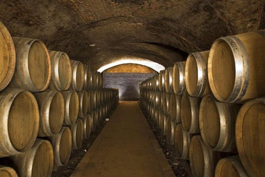 Show item 4 of 5. Tour of the organic wineries in the Piacenza hills