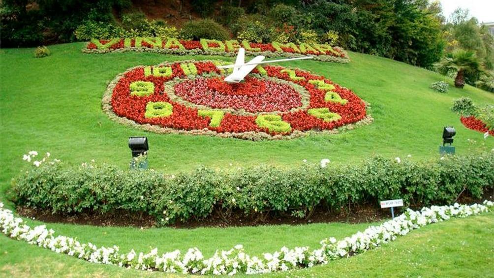 Carregar foto 2 de 6. Manicured lawn with garden clock.