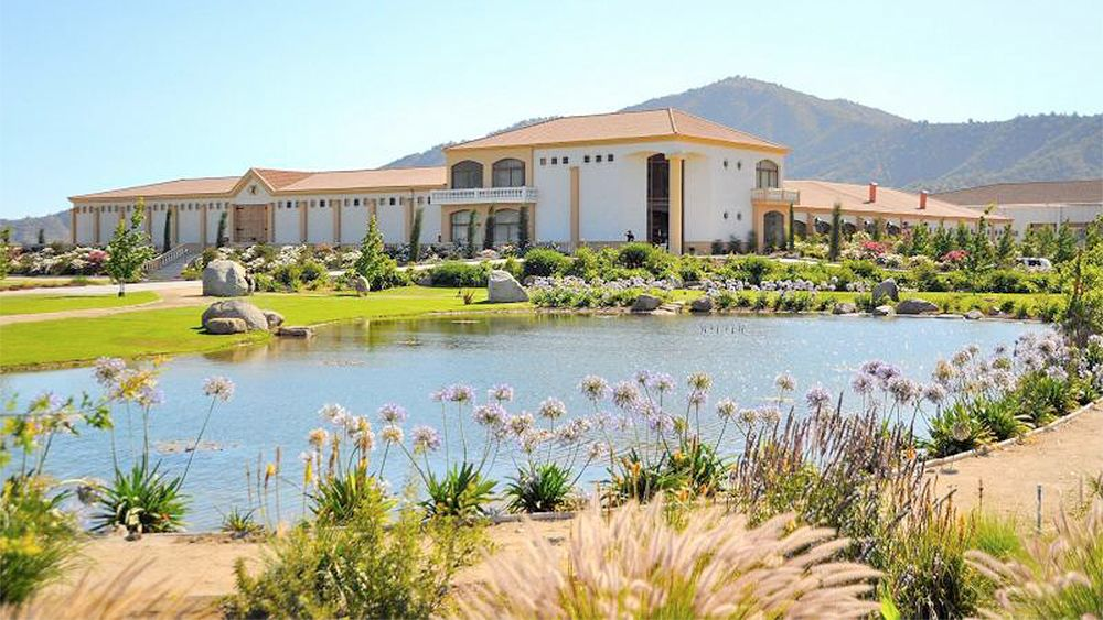 Full-Day Tour of Estancia El Cuadro at Casablanca Valley with Lunch