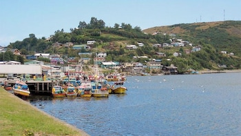 Ancud & Puñihuil Full-Day Tour
