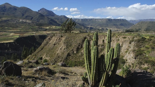 Colca Canyon from Lima