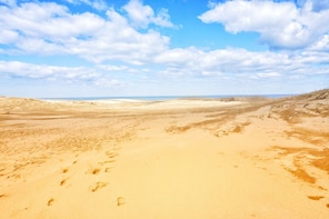 From Osaka: Tottori Sand Dunes 1-Day Bus Tour with Lunch