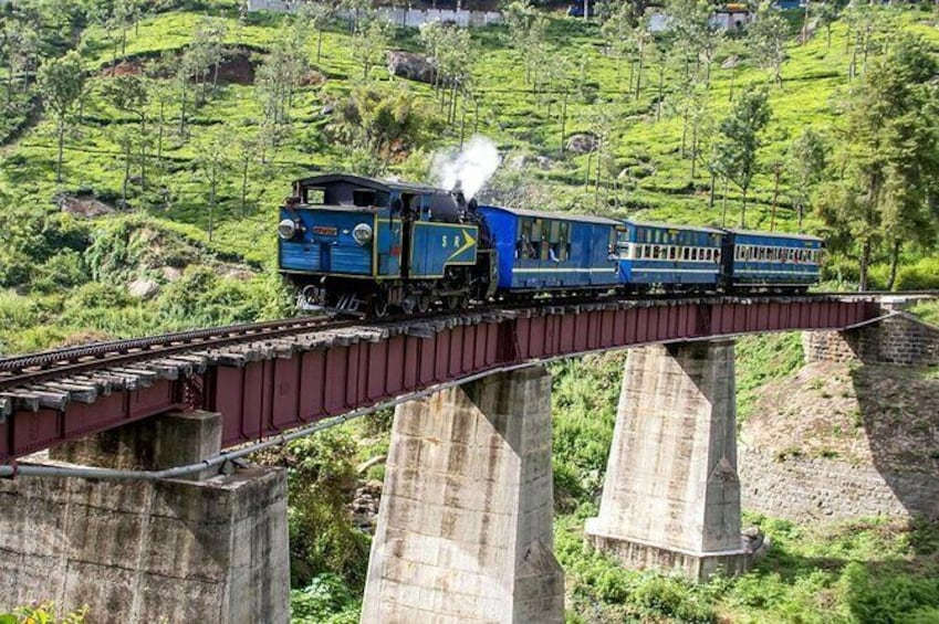 Coimbatore to Ooty- transfers+Hotel+Sightseeing