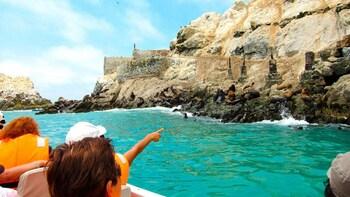 Lima's Palomino, Cabinzas & San Lorenzo Islands Cruise