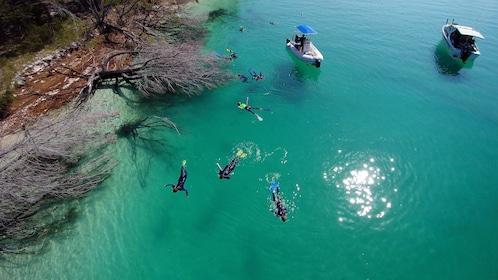 Aerial view - Snorkelling at Wathumba creek.jpg