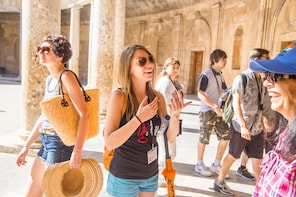 Alhambra with Nasird Palace guided tour