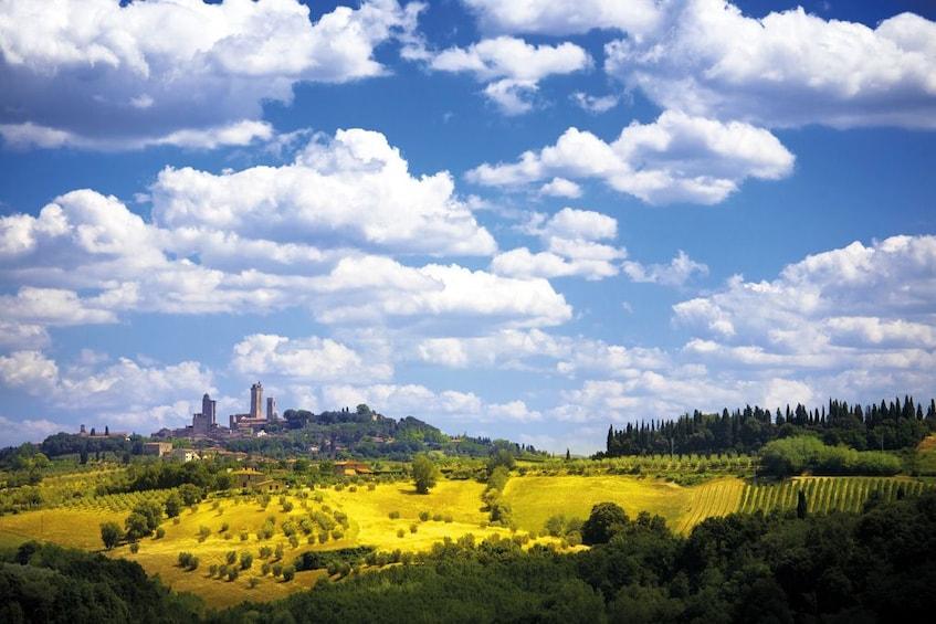 Full-Day Tour of San Gimignano, Siena & Chianti