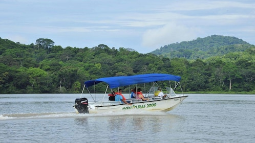 Enjoy a smooth ride skimming through Gatun Lake