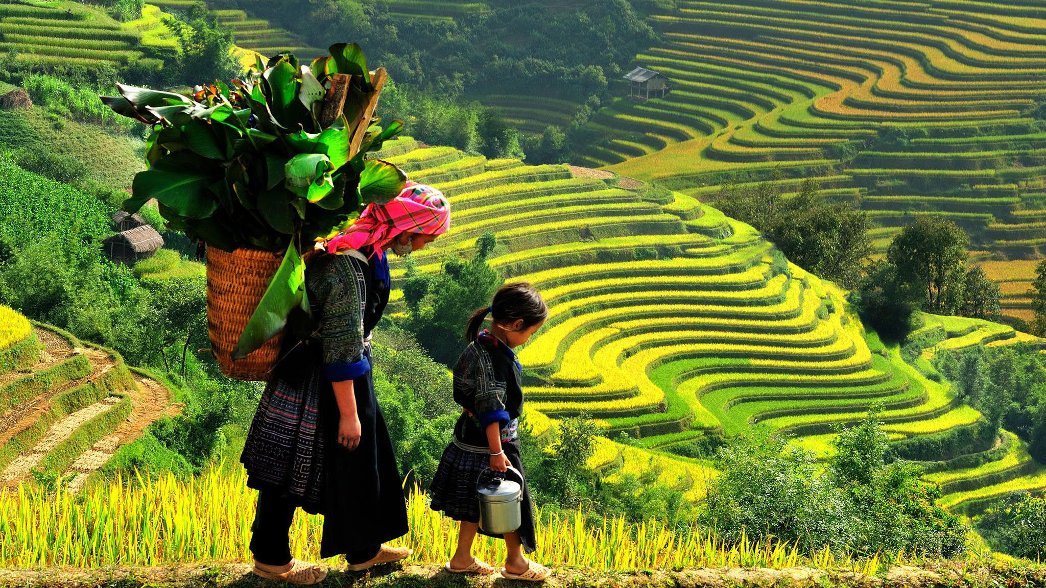 Private 4-Day Sapa Trekking Tour