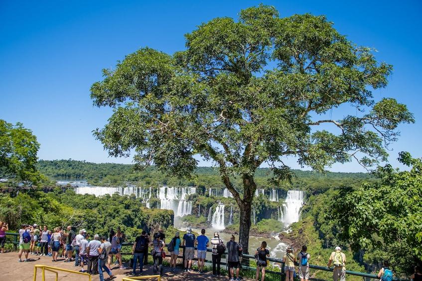Cargar ítem 5 de 9. Iguazu Falls Tour on the Brazilian & Argentine Sides