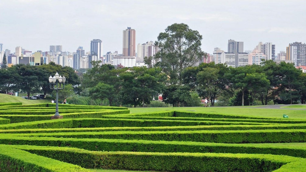 Carregar foto 2 de 10. Explore Curitiba to discover the city's sights and sounds