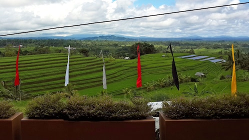 Bali_6.jpeg