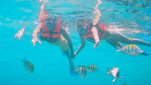 Couple snorkeling in Cancun