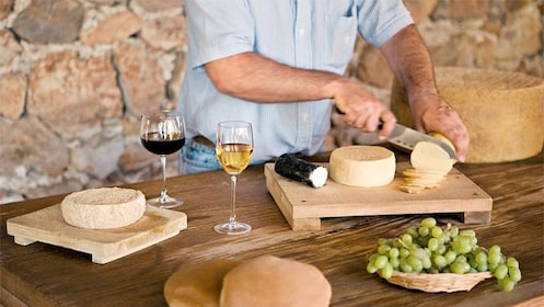 Variety of sample cheeses and wines in Mexico