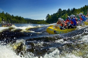 WildWater Rafting in Carpathians, DayTrip from Bucharest