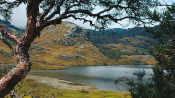 Full-Day Excursion to Cajas National Park
