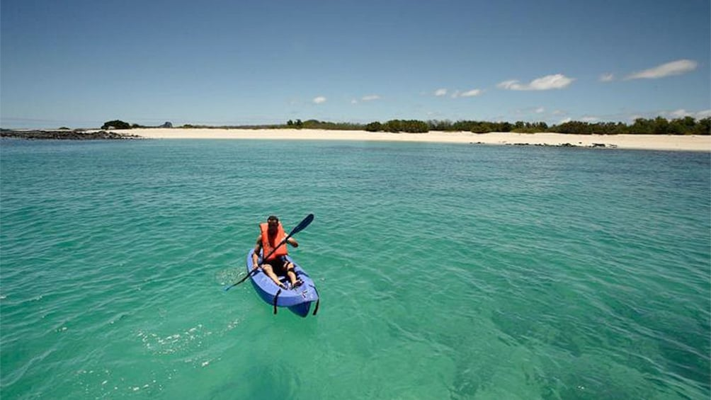 Person kayaking on Galapagos