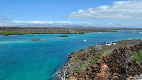 4 Day Galapagos Islands Yacht Trip Wildlife Tour With 5