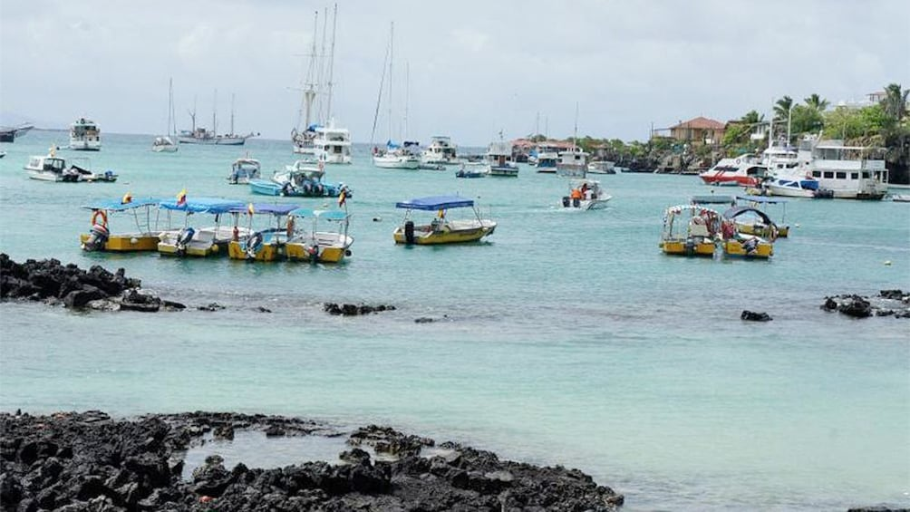 Show item 1 of 8. Serene view of Galapagos Island