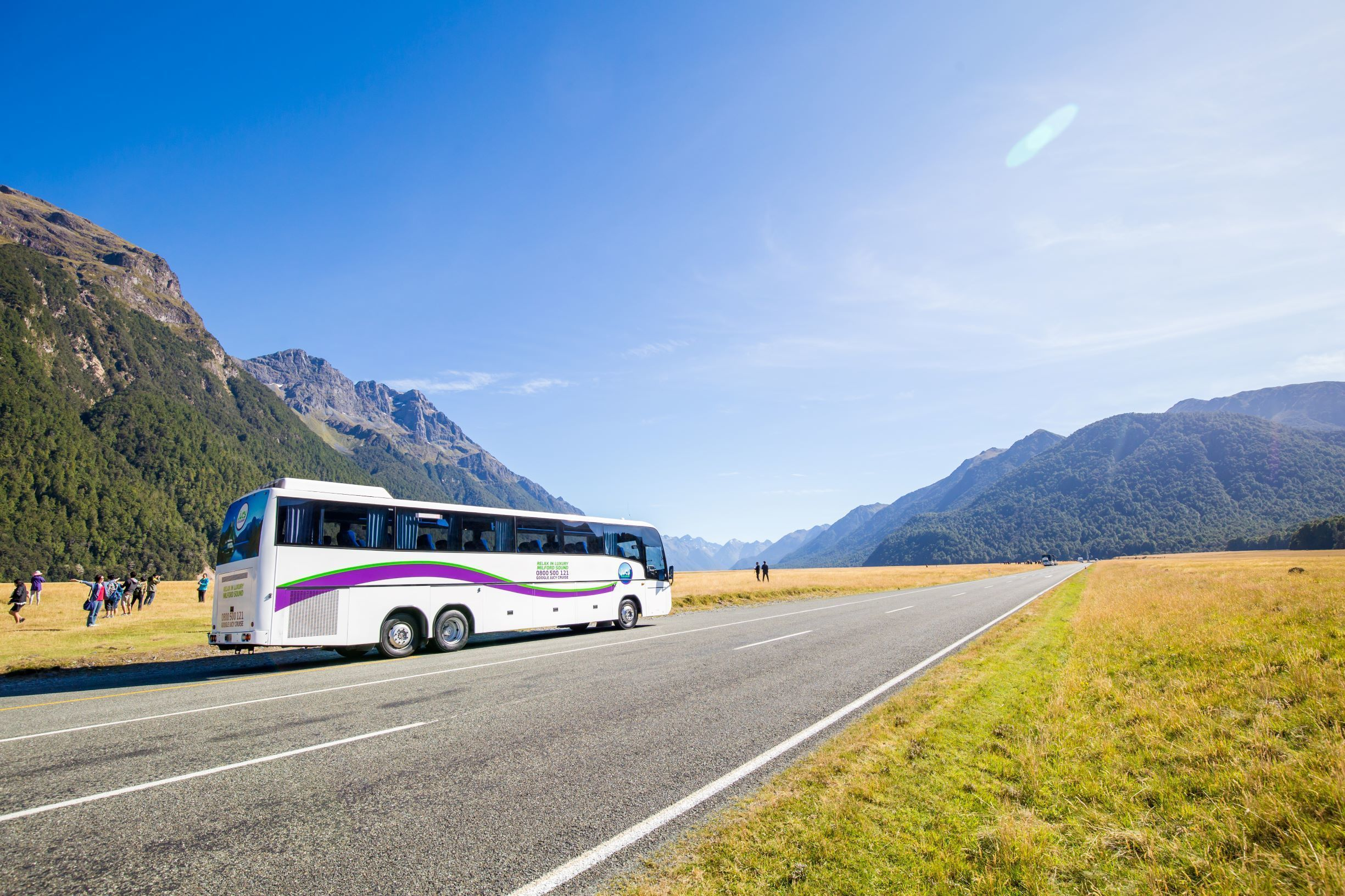 Milford Sound Vista Glass Roof Coach & Cruise Full Day Tour