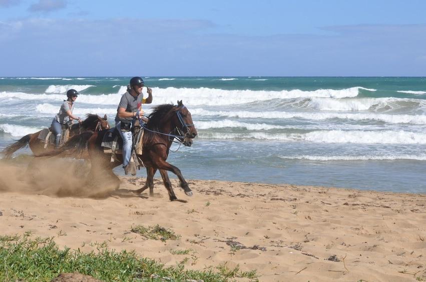Foto 4 von 10 laden Horseback Riding Experience