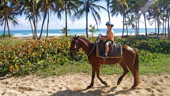 Experiência de andar a cavalo