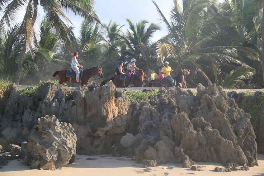 Foto 3 von 10 laden Horseback Riding Experience