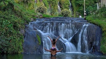 Santa Rosa de Cabal and Hot Springs Full-Day Private Tour