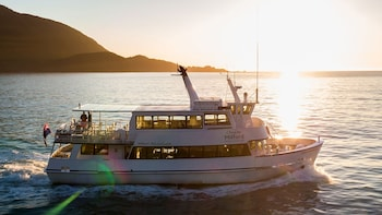 Milford Sound Small Group Tour & Cruise From Te Anau