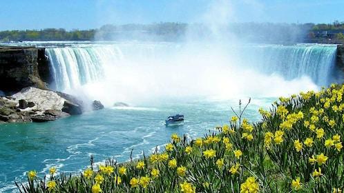 Entire Niagra Falls