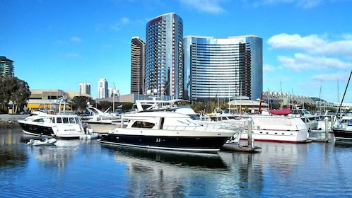 San Diego waterfront with boats